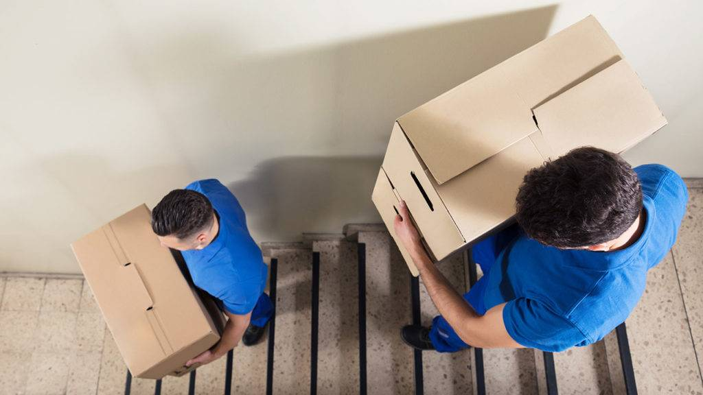 Two employees holding boxes and walking down a set of stairs